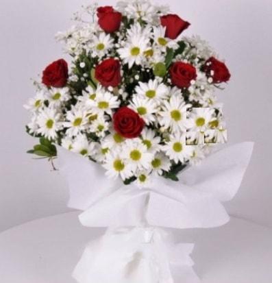 7 adet kırmızı gül ve papatyalar krizantem  Erzincan çiçek yolla , çiçek gönder , çiçekçi