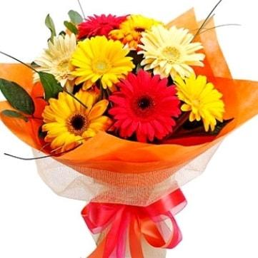 9 adet karışık gerbera buketi  Erzincan çiçek mağazası , çiçekçi adresleri