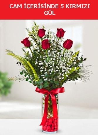 Cam içerisinde 5 adet kırmızı gül  Erzincan online çiçekçi , çiçek siparişi