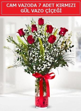 Cam vazoda 7 adet kırmızı gül çiçeği  Erzincan 14 şubat sevgililer günü çiçek