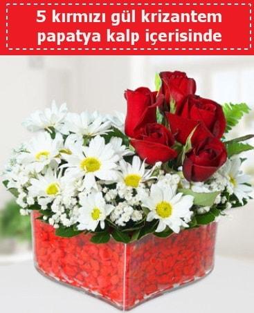 mika kalp içerisinde 5 kırmızı gül papatya  Erzincan hediye sevgilime hediye çiçek