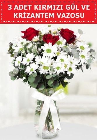 3 kırmızı gül ve camda krizantem çiçekleri  Erzincan hediye sevgilime hediye çiçek