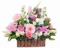 Erzincan çiçekçi telefonları  Sepette özel bir arajman