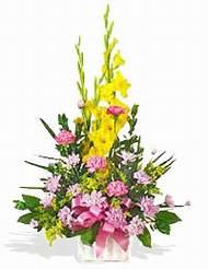 Erzincan internetten çiçek satışı  sepet içinde Glayor karanfil özel tanzim